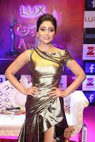 Shreya Saran in Skin Tight Golden Gown ~  Exclusive 010.JPG