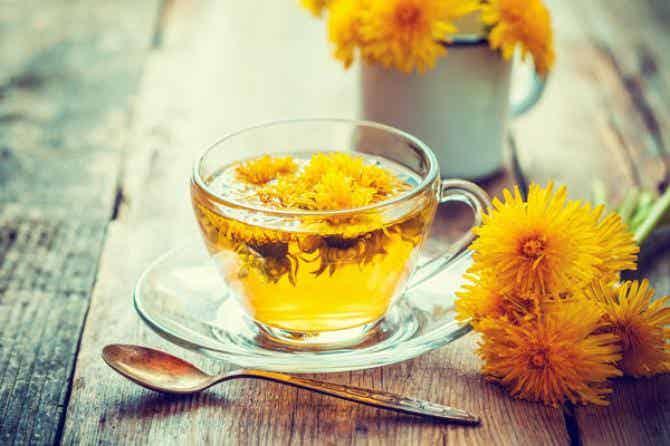 teh dandelion