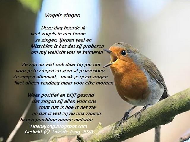 Gedichten En Verhalen Uit Het Leven Vogels Zingen Birds Are Singing
