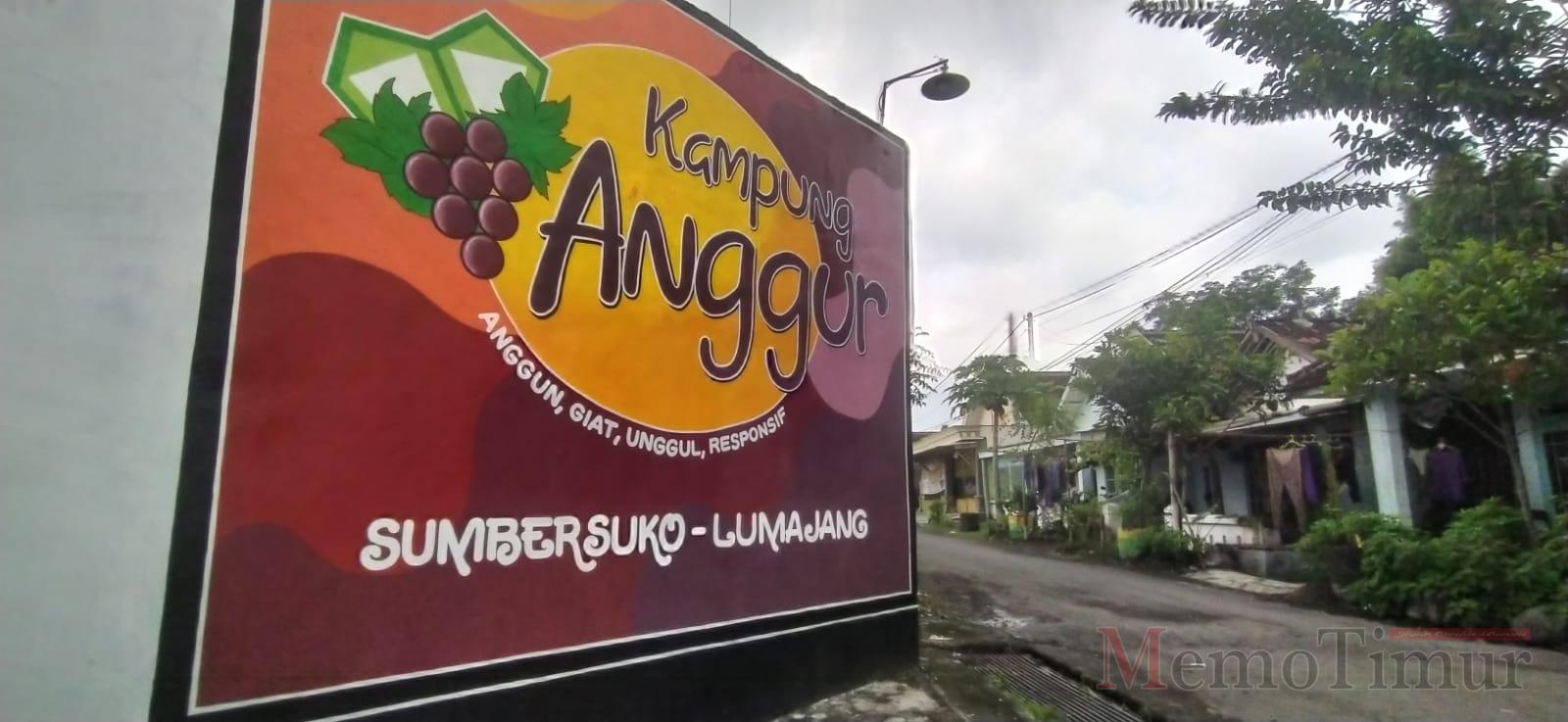 Agar Lebih Anggun, Kecamatan Sumbersuko Gelar Lomba Mural di Kampung Anggur