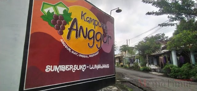 Agar Lebih Anggun, Lomba Mural akan Digelar di Kampung Anggur