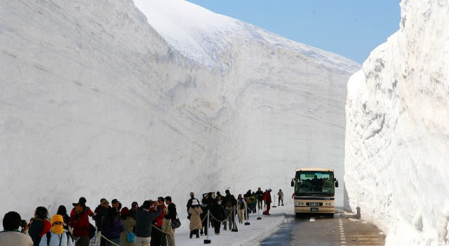 lihat salju pas musim semi di jepang