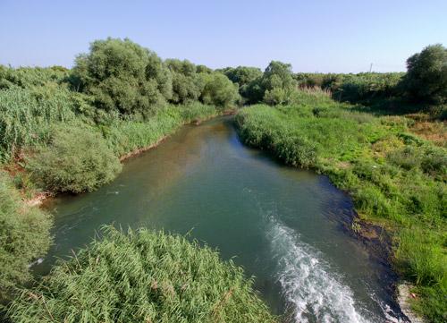 Δράσεις για τα προστατευόμενα είδη ιχθυοπανίδας στον ποταμό Ευρώτα