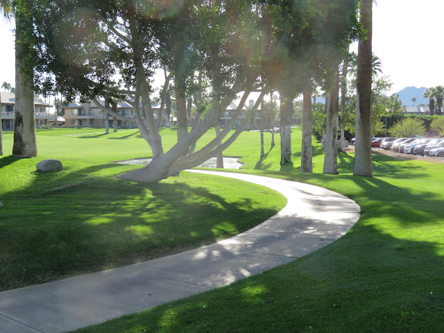 Palm Springs with Lawn using Recycled Water