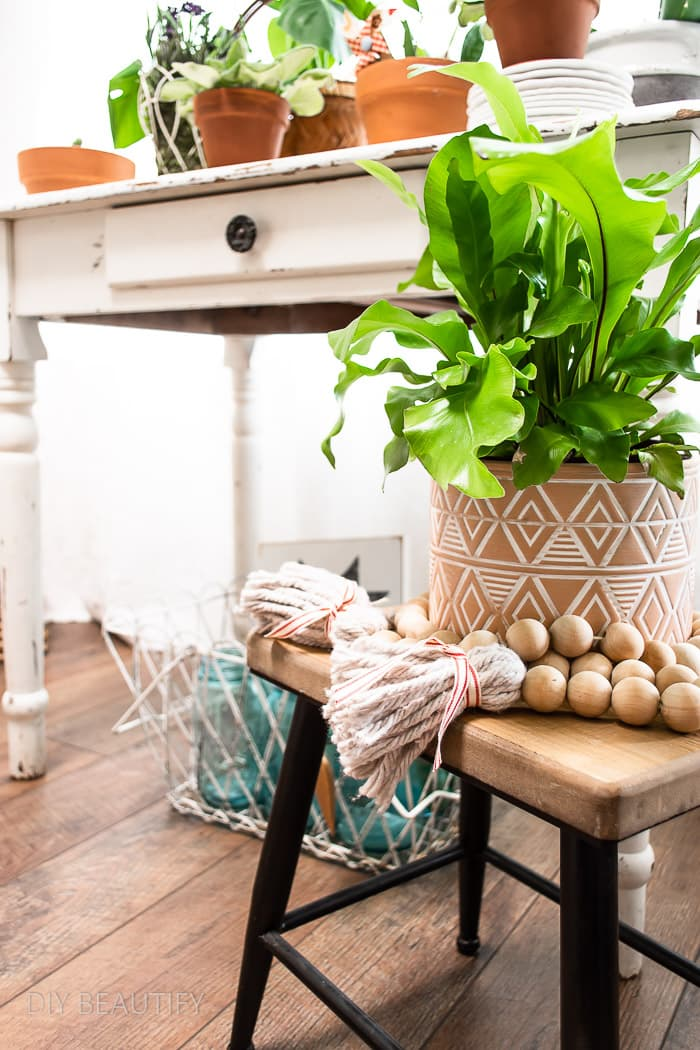 houseplant collection and wood bead garland with fluffy tassels