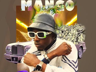 DOWNLOAD MUSIC: Dela Naija - Mango