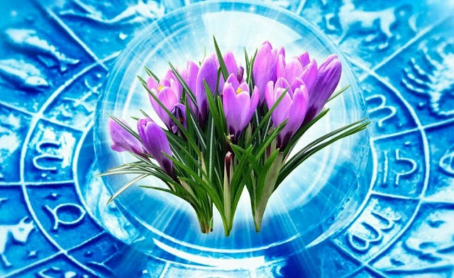 Апрель — как одна большая белая полоса для трех знаков Зодиака