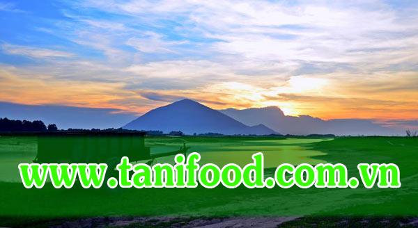 tanifood.com.vn, đặc sản tây ninh, bánh canh trảng bàng, bánh tráng me, bánh tráng phơi sương