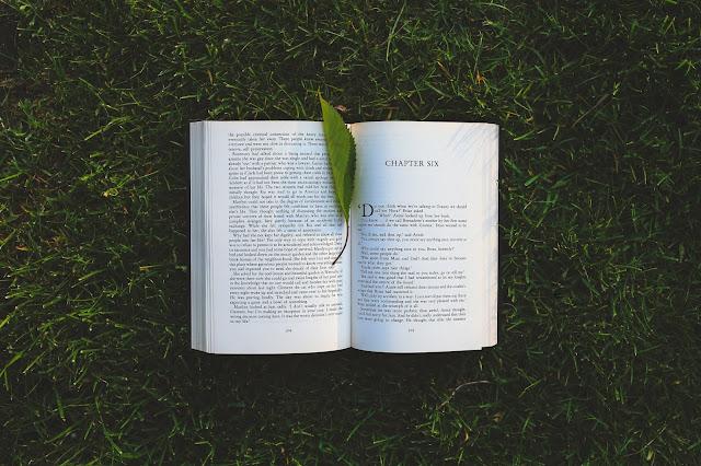Inspiração | Eu sou a literatura