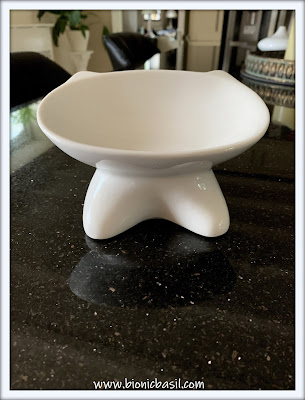 Top Tips For Cat Pawrents ©BionicBasil® Elevated Cat Bowl