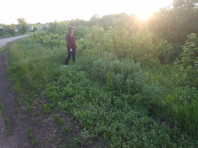 прогулки в деревне, мои 92 дня лета