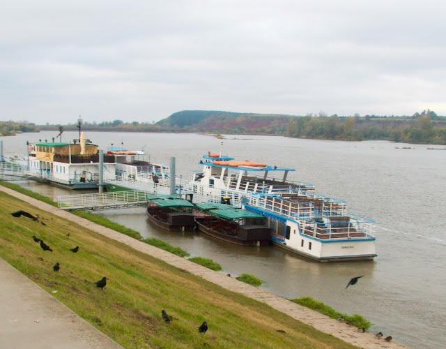 Wisła, Kazimierz Dolny, statki, woda, ptaki