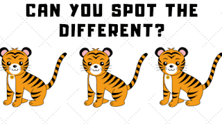 In these visual puzzles, your challenge is to find the odd one out.