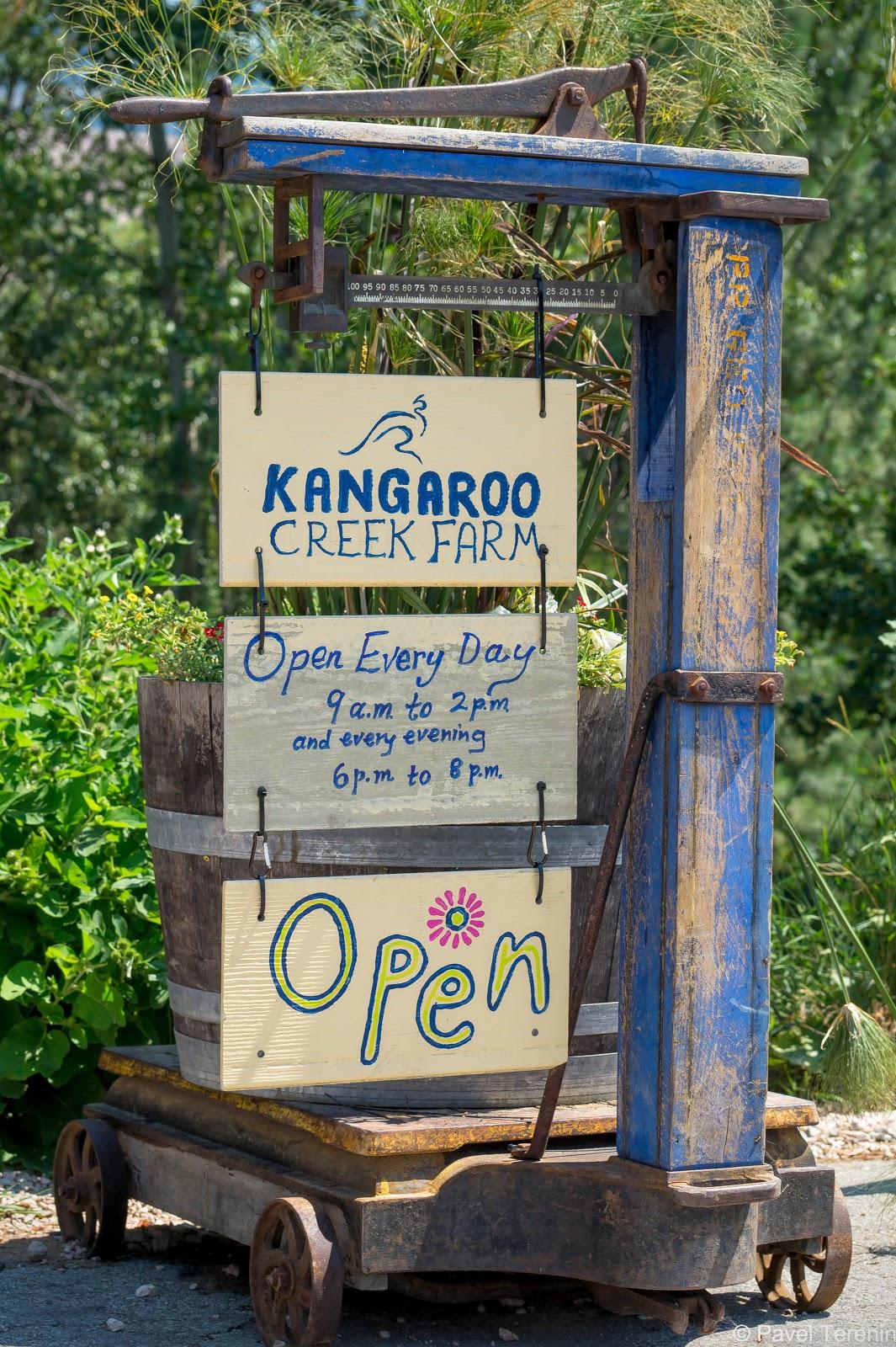 кенгуриная ферма уже 25 лет радует посетителей возможностью прогуляться среди кенгуру и других представителей австралийской фауны