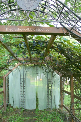 Diy Show Off Diy Grape Arbor And Gazebo Diy Show Off Diy Decorating And Home Improvement