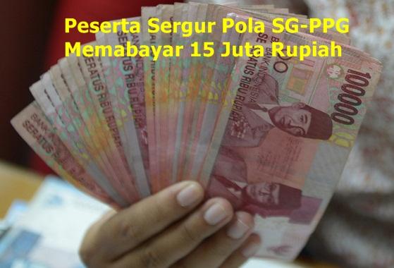Biaya Sertifikasi Guru 2016 Pola SG-PPG 15 Juta Rupiah Dibayarkan ke LPTK