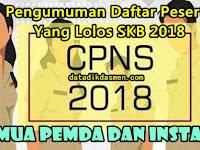 Pengumuman Daftar Peserta CPNS Yang Lolos Ke Ujian SKB CPNS 2018