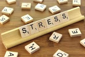 what does stress do to the brain