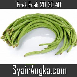 Erek Erek Kacang Panjang 2D 3D 4D