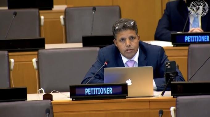لجنة تصفية الاستعمار : دعوات إلى الأمم المتحدة لتحديد موعد لإنهاء الاستعمار في الصحراء الغربية.
