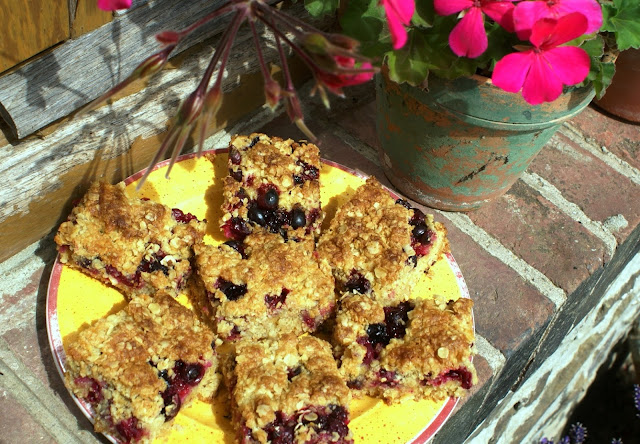 Oat and fruit squares from a Green and Rosie Life