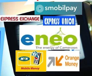 How To Use Mtn Mobile Money Online Cameroon Web Login Ransbiz Sims 4 Making Money Gardening
