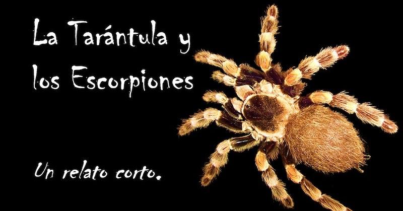 La Tarántula y los Escorpiones. Un relato corto.