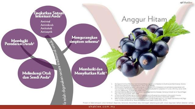 RES V| PRODAK TERBARU SHAKLEE MALAYSIA| WINICHELEN OFFICIAL BLOG