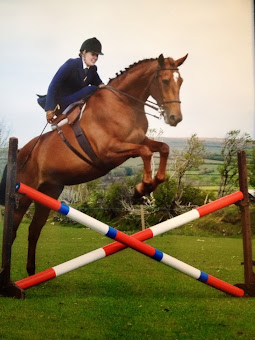 Springwillow Equestrian Kathy Hollick Blee