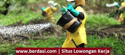 Lowongan Kerja S1 Jurusan Pertanian/Agroteknologi/Agribisnis