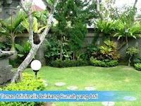 Taman Minimalis Belakang Rumah yang Asri