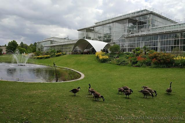Plantentuin Meise Plant Palace Greenhouse