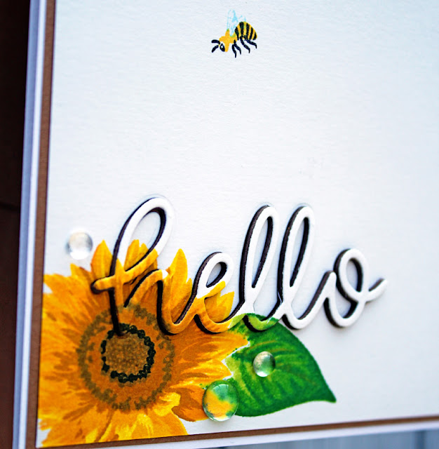 Sunny Studio Stamps: Sunflower Fields Hello Word Dies Everyday Card by Vanessa Menhorn