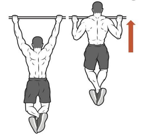 Sudah Tahu Cara Membentuk Otot Sayap Dengan Cepat ?