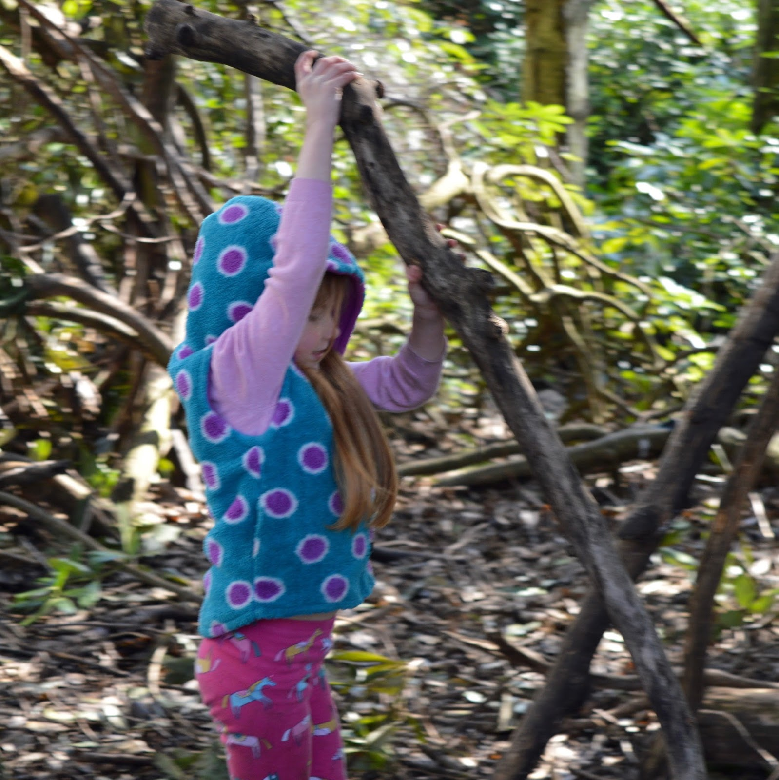 Beamish Wild | School Holiday Club & Activities in County Durham | North East England - den building task