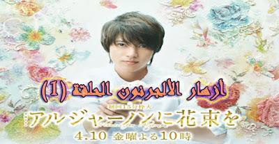 أزهار الألجرنون الحلقة 1 Series Flowers for Algernon Episode