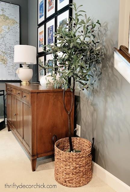 inexpensive DIY olive tree in basket
