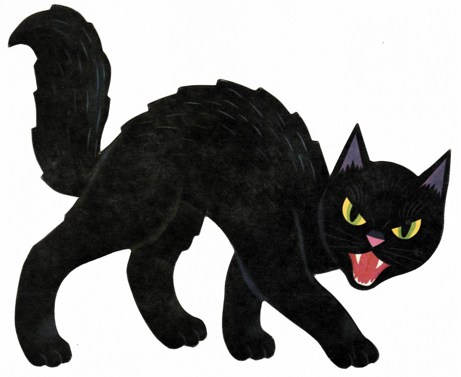 Halloween cat images