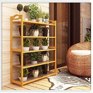 Haneez 5 Layers Bamboo Shoe Rack