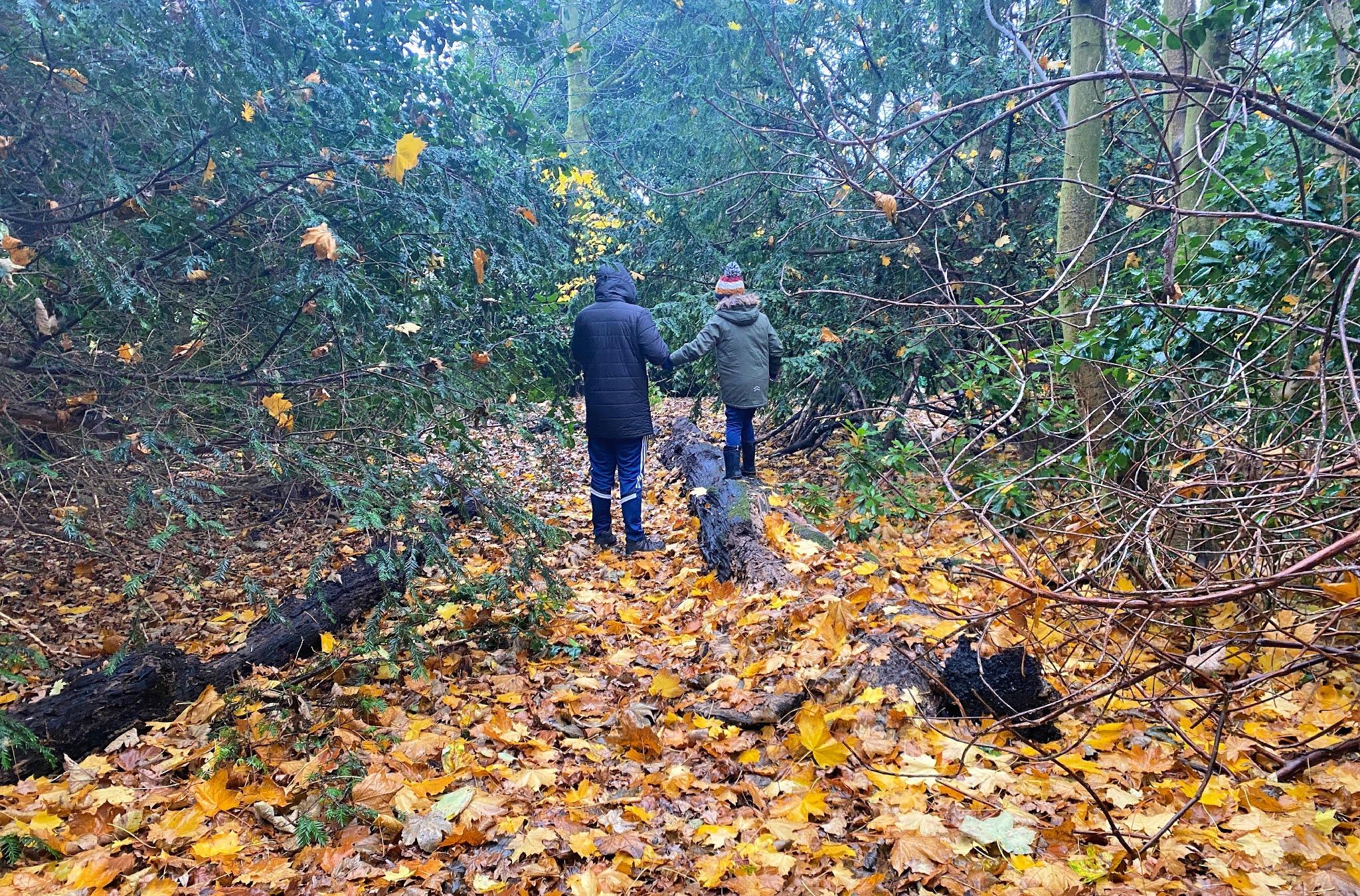 man and boy walking through woods