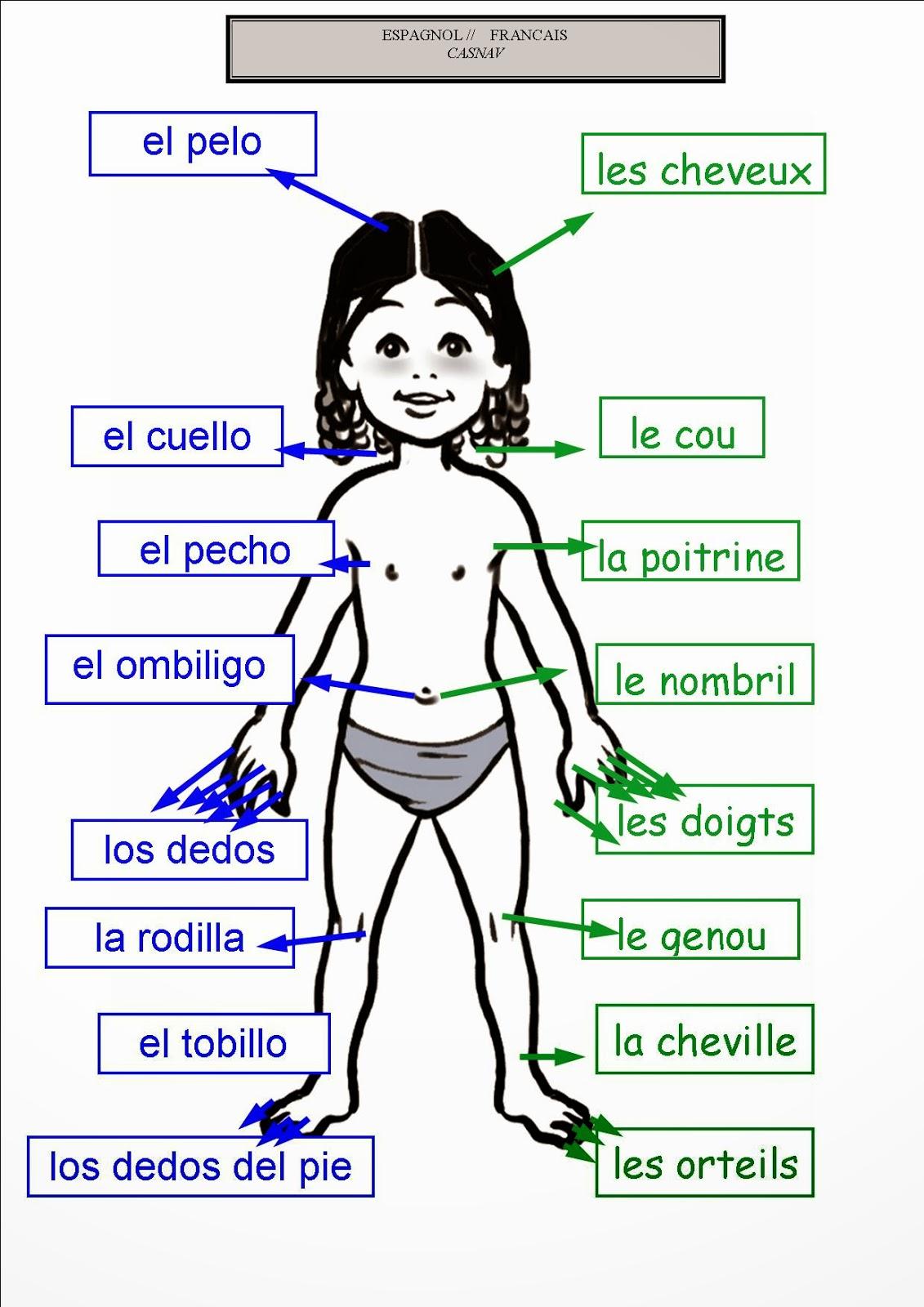 Learning Spanish: Les chiffres en espagnol