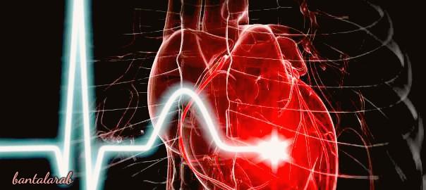 ماهي امراض القلب والسكتة الدماغية What are heart disease and strok