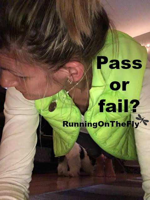 pass or fail The pass/fail (ungraded) option may be used by students pursuing undergraduate programs in all faculties except the faculty of education, osgoode hall law school or.