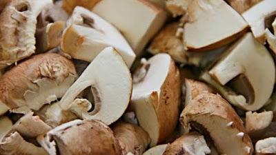 Scope of Mushroom Business in Lakshadweep