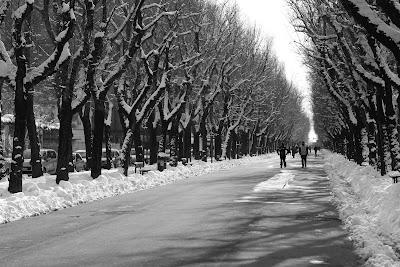 Vercelli neve