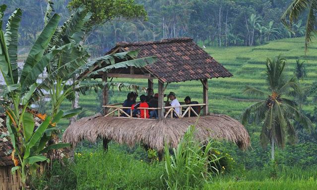 Tiket Masuk Wisata Taman Langit Banyuwangi