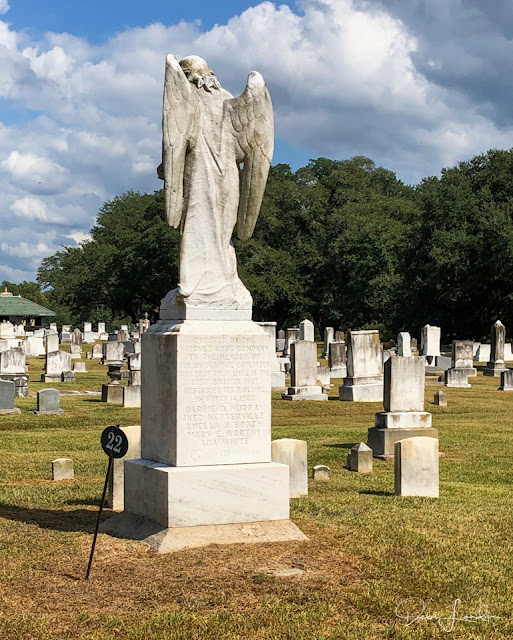 The Turning Angel, Old City Cemetery, Natchez.