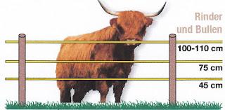 Villanypásztor rendszer szarvasmarhához