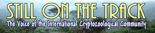 CRYPTOZOOLOGY ONLINE: Still on the Track