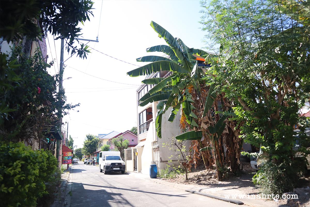 INAHRTE | Covid 19 | empty street